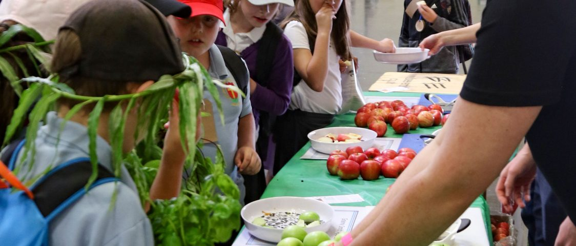 Food & Farming Day - Kids Country